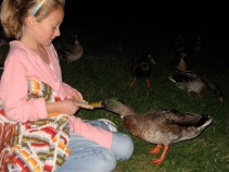 Kate feeding the ducks