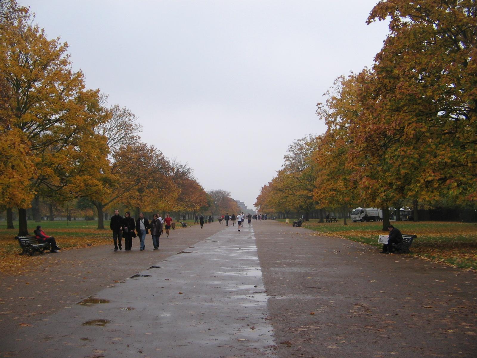 Kensington park rowan trumpet prof blog for Kensington park