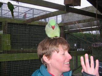 sarah with parrot