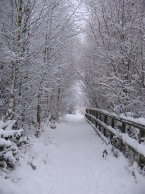 snowy path where Sarah runs