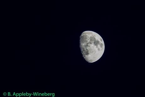 Moon over Glassboro